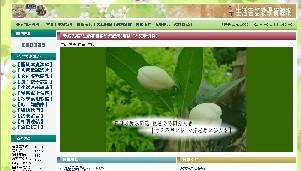 http://www.orz.i36c.com/
